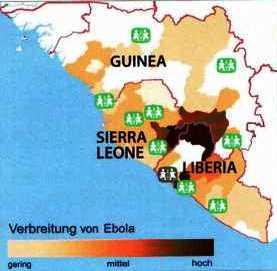 Ebola-Verbreitung in Westafrika